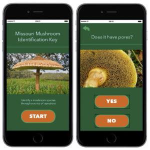 Mushroom identification app.